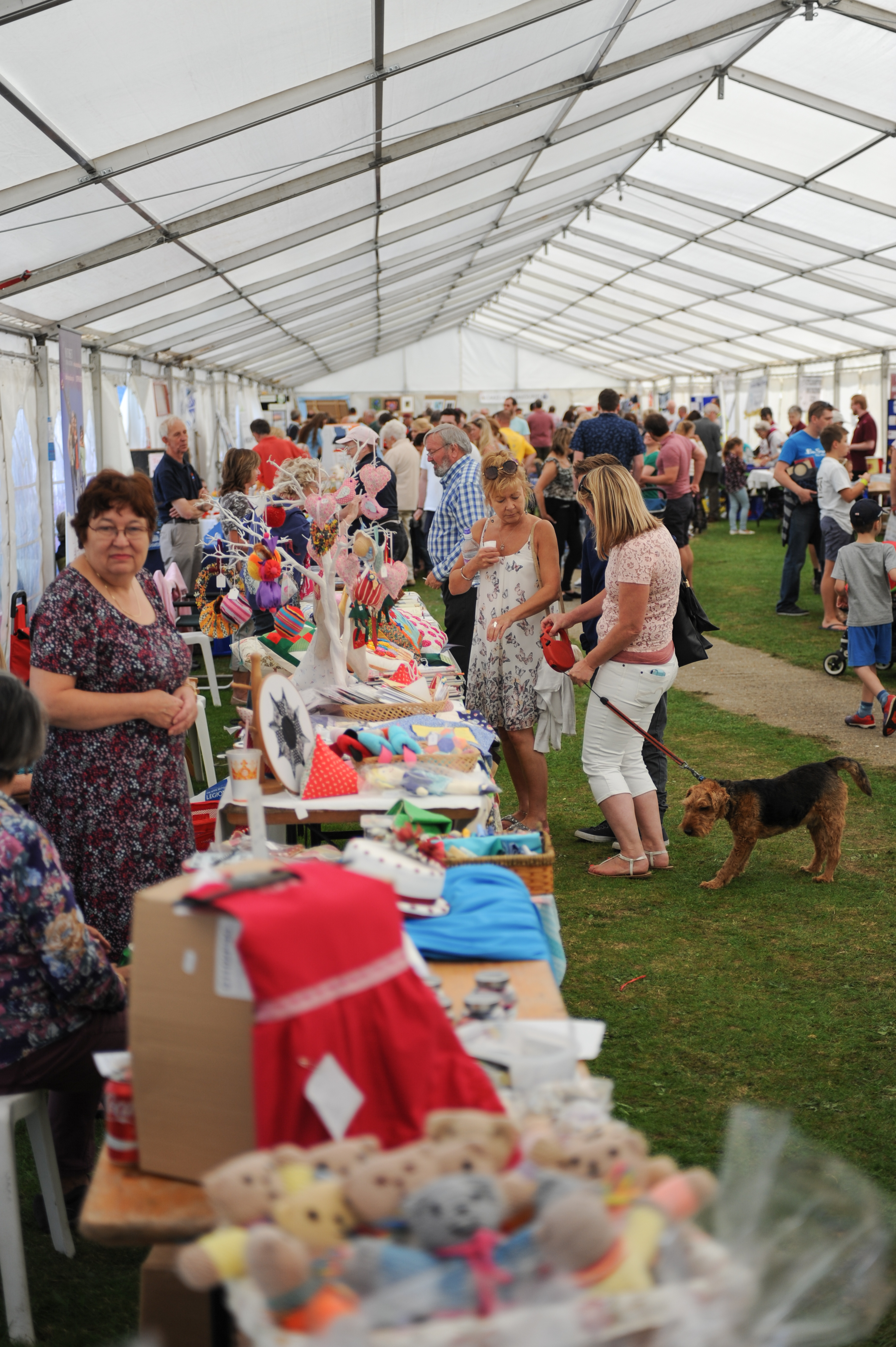 Fun And Easy Psychic Games: Town Show And Family Fun Day