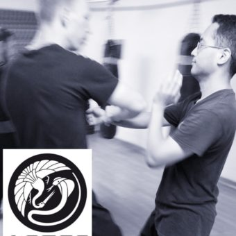 Demonstration in Kamon Martial Arts